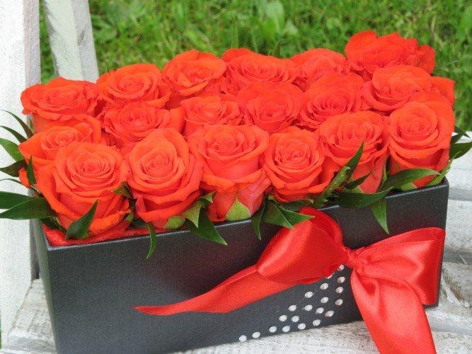 flowerbox z czerwonych róż Koziegłowy