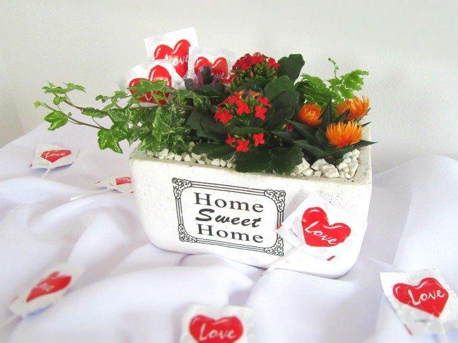 kwiaty na prezent Czestochowa