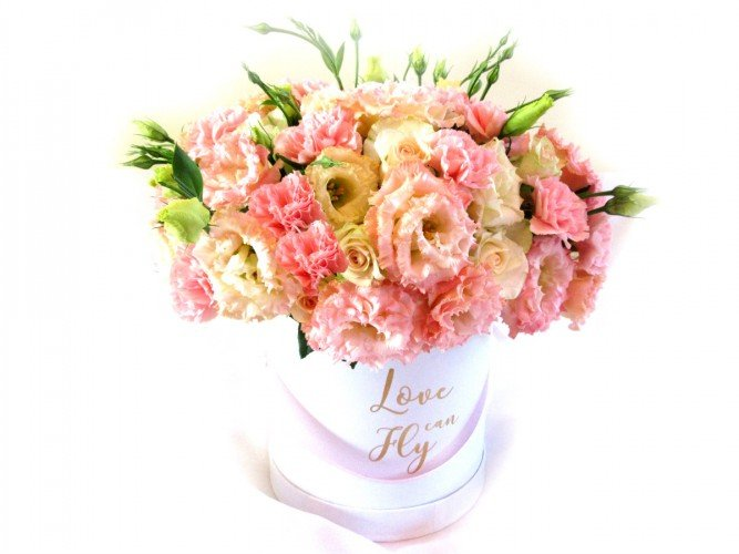 Flowerbox duży pastelowe kolory