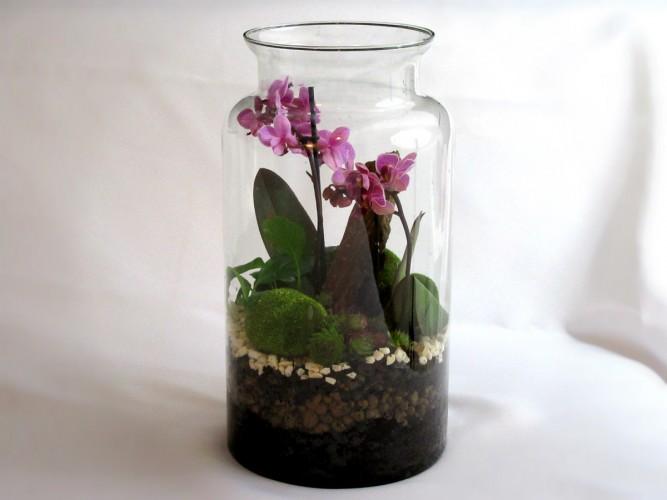 Żywe kwiaty w szkle